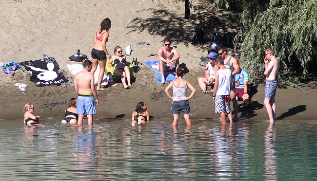 Cooling off in the Wairau River at Spring Creek