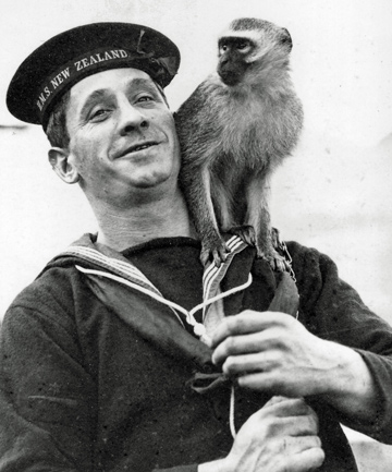 UNLIKELY MASCOT: A navy rating from HMS New Zealand with a monkey.