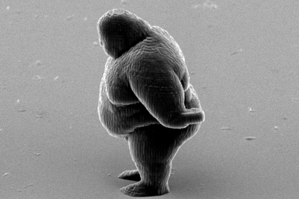 "FEBRUARY 5: A nano-scale model of a big man created by a 3D printing technique is photographed with an electron microscope. The figure is created by a process called ""two-photon lithography"" involving a laser beam hardening liquid resin to create micro objects of solid polymer."