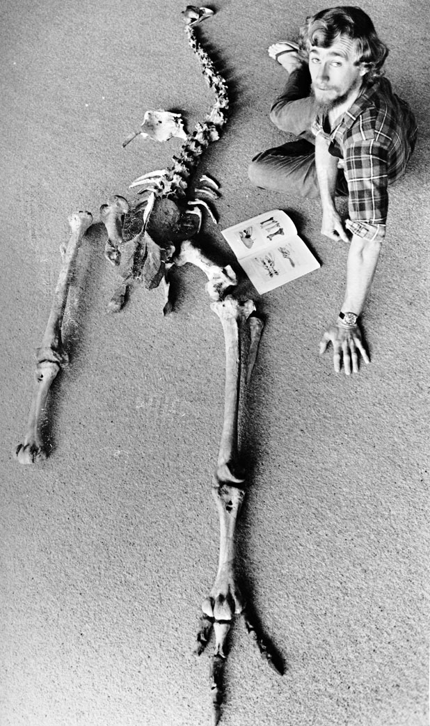 WORTHY FIND: This giant moa skeleton was found in 1982 in a Waitomo cave by part-time museum worker Trevor Worthy.