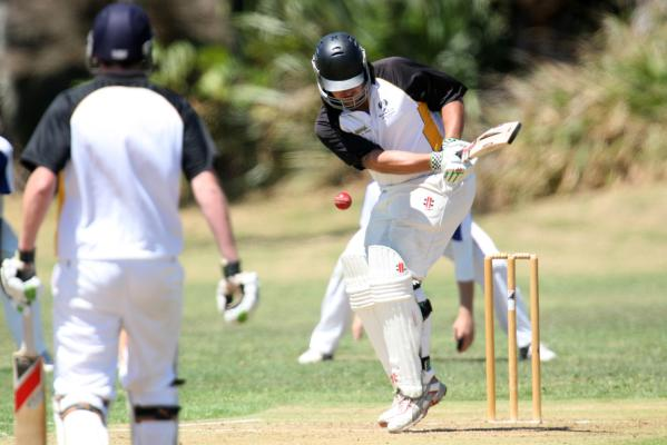 Ellerslie V Waitakere Cricket