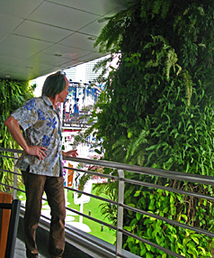 EASY ON THE EYE: What fun it would be to have a vertical garden growing up a Christchurch building.