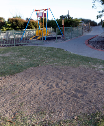 GONE: There is now nothing to show of the tree that once stood near the slide in the Lions Playground.