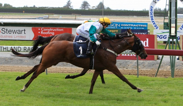 BACK ON TOP: Irish Wit (Courtney Barnes) wins the Invercargill Licensing Trust Handicap at Ascot Park yesterday.