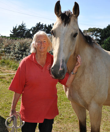 Brenda Harland and her horse Toughie prepare for the Otago Goldfields Cavalcade.