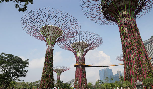 The Gardens by the Bay in Singapore.