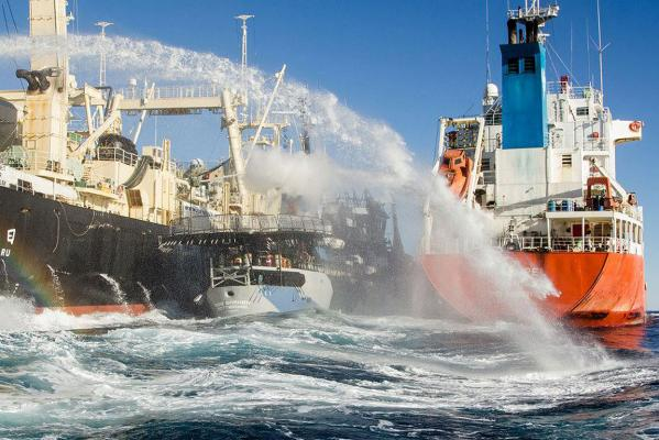 A photo provided by anti-whaling activist group Sea Shepherd is said to show a clash with Japanese whalers on Monday.