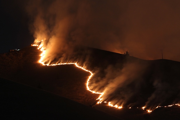 RIBBON OF FLAMES: The fire, south of Blenheim, at 3.30am.