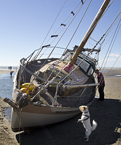 Yacht grounded in Sumner