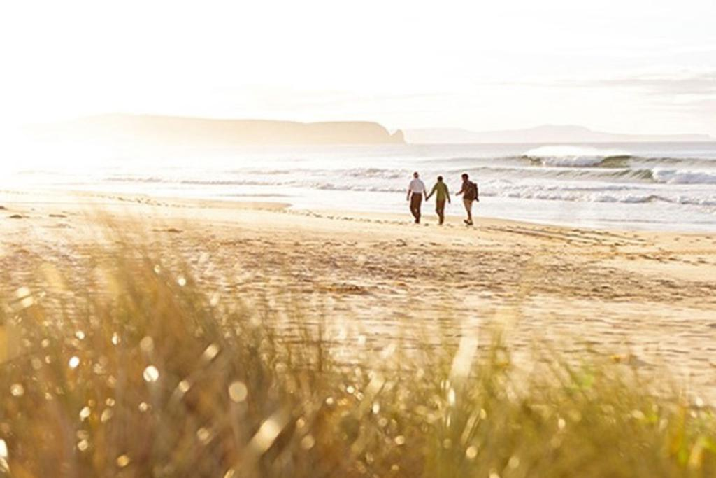 Bruny Island has it all: dramatic scenery, artisan food and wine, wildlife at every turn and some hidden accommodation gems.