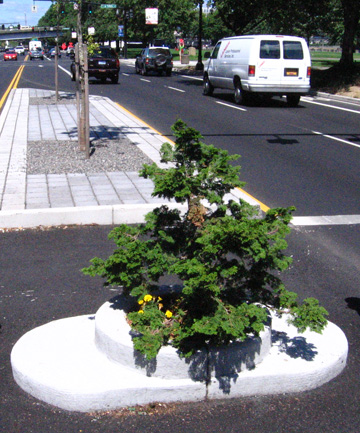 SNAIL RACE ARENA: Mill Ends Park, claims to be the smallest park in the world.