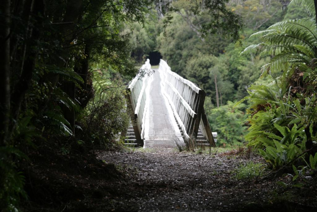 Percy Burn Viaduct on the south coast of the Fiordland National Park.