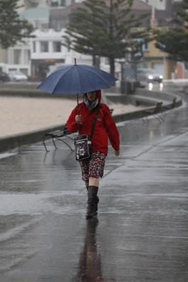 Wellington wild weather