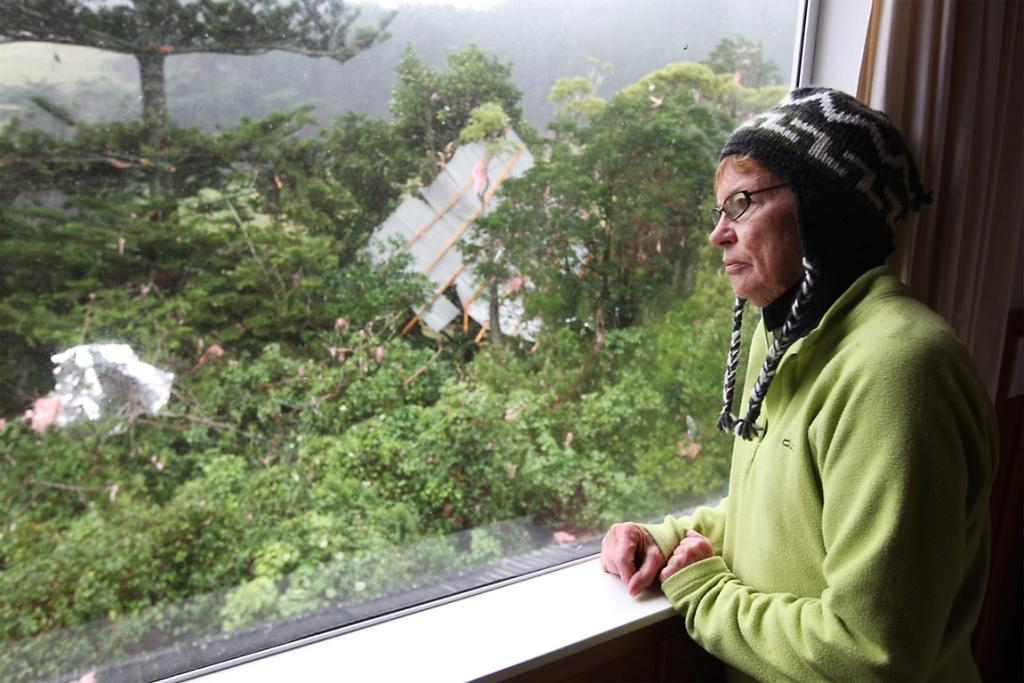 Linda Brasell looks out of her bedroom window to where her roof landed in Waikato.