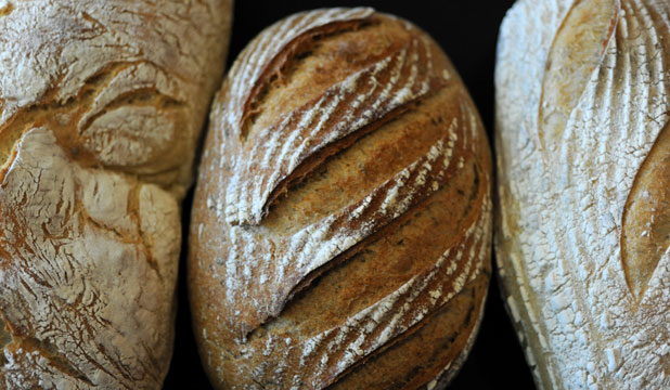 The (sour) art of baking bread
