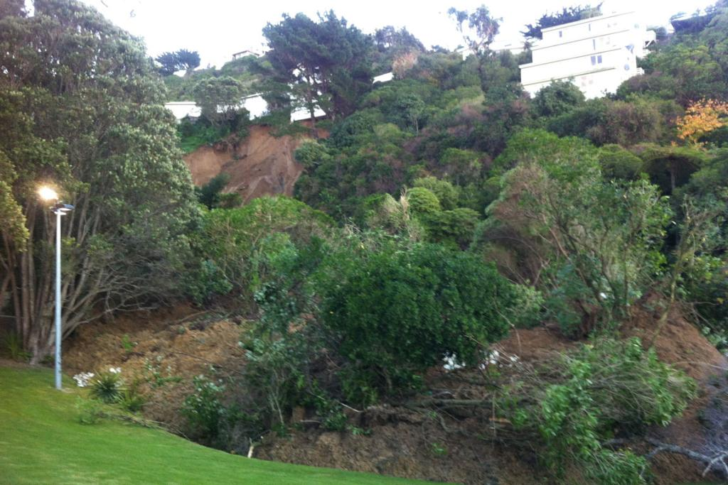 Part of the cliff that collapsed in Wellington, in the Berhampore-Kingston area.