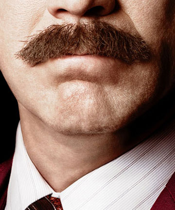 KIND OF A BIG DEAL: The poster for Anchorman 2.