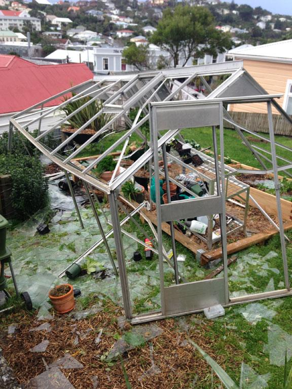 A greenhouse in Brooklyn that didn't survive the night.
