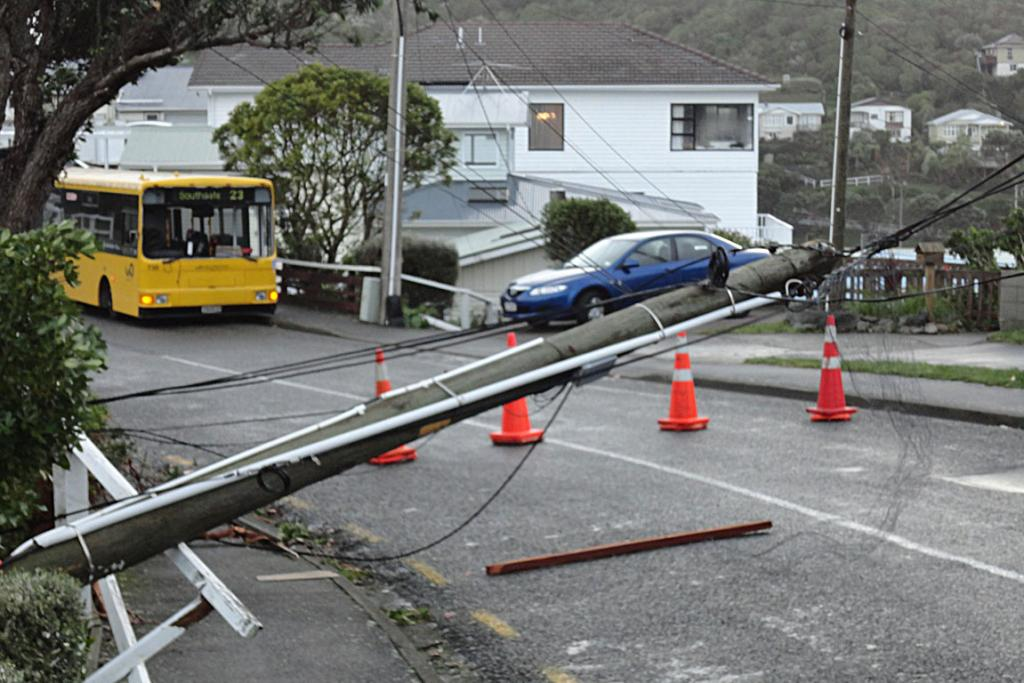 Storm damage in Southgate.