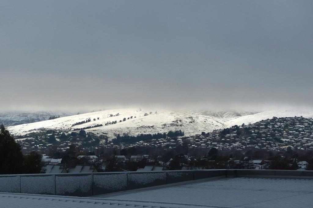 CLEAR MOMENT: Tessa Rait captures a break in the snowfall from her Hazeldean Rd workplace.