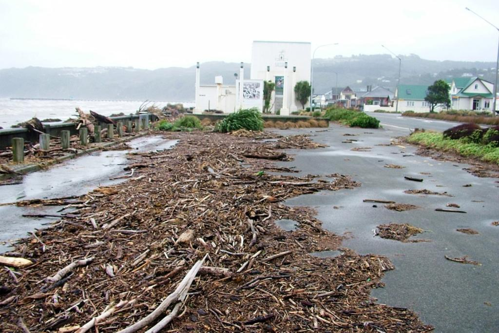 Debris on Petone Beach near the Settlers Museum. Waves went over the wall between the beach and the street.