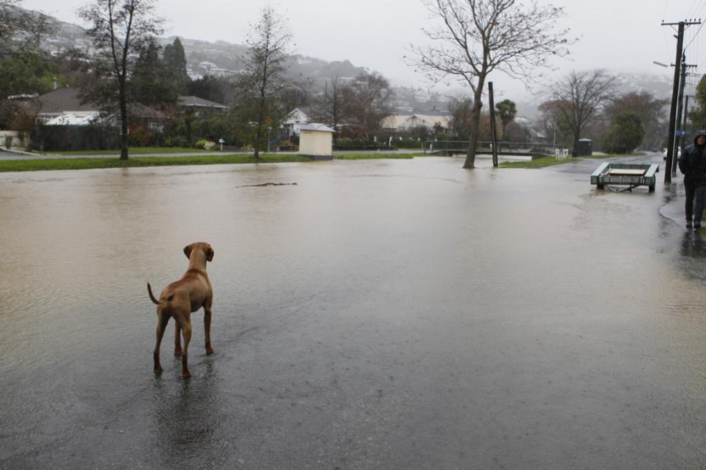 Flooding in Eastern Tce, Christchurch.
