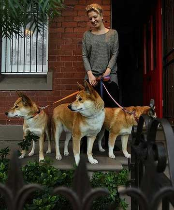 Desiree Hemberger with her three pet dingoes