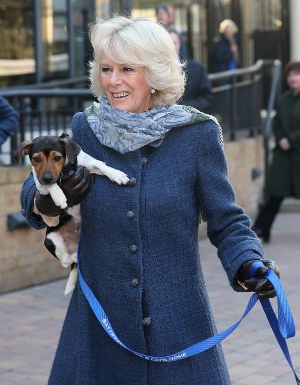 Camilla, Duchess of Cornwall holds up her dog Beth.
