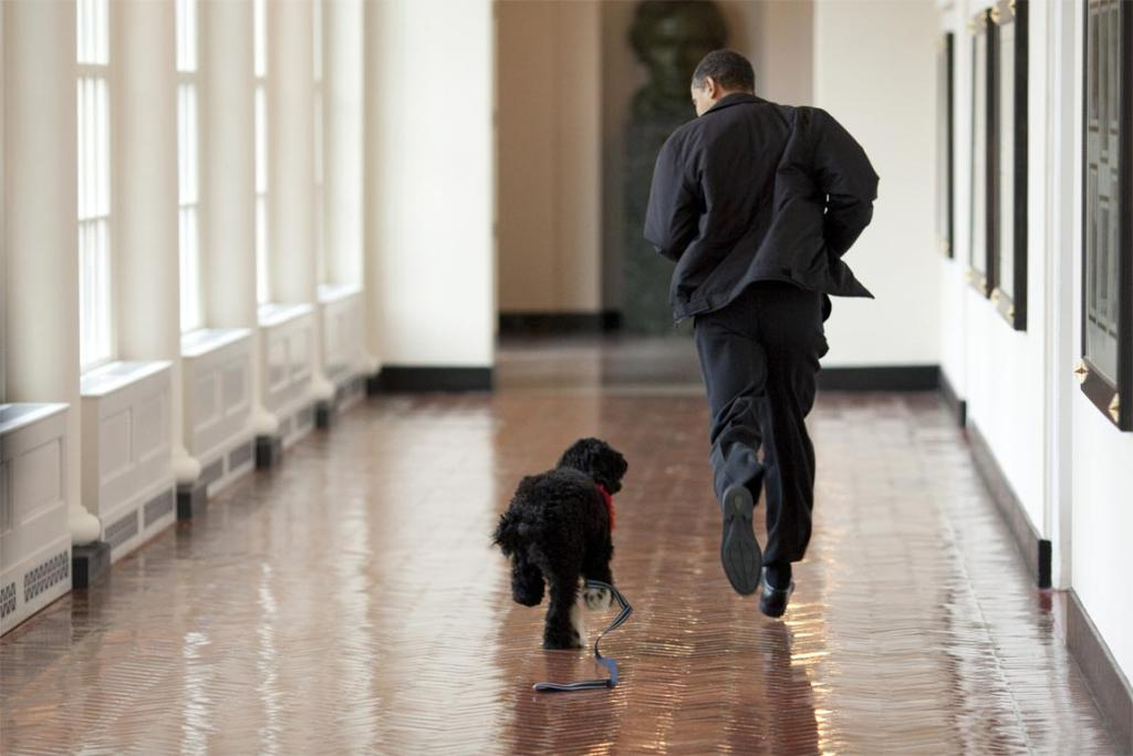 US President Barack Obama with the 'first dog' Bo.