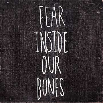 Fear Inside our Bones - The Almost
