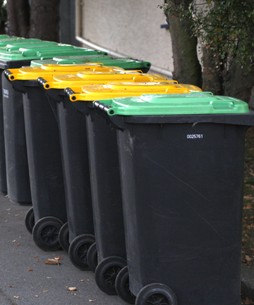 WHICH ONE? After seven years of use, some residents are stilling putting their waste in the wrong rubbish bin.