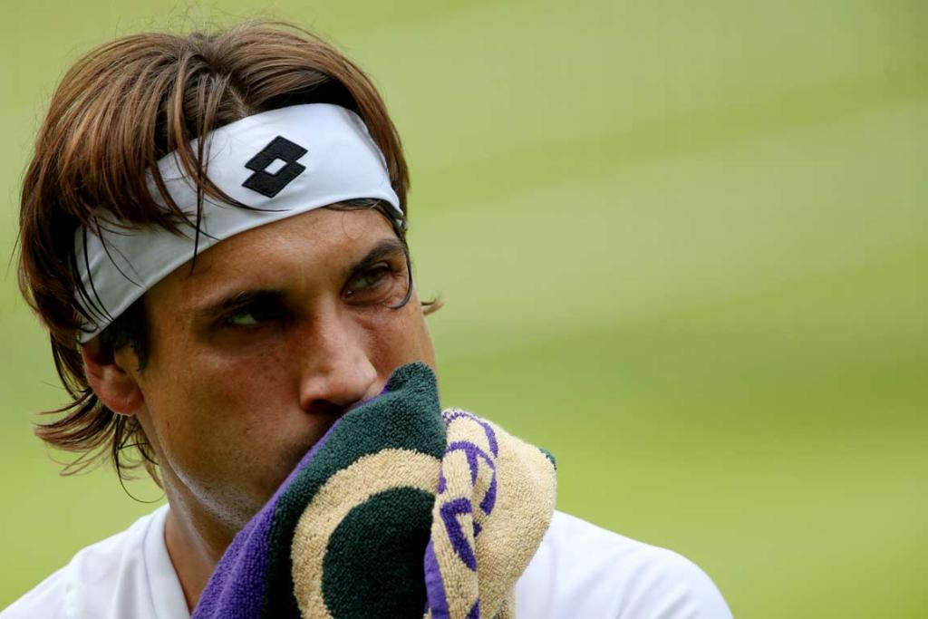 David Ferrer could not take advantage of Juan Martin del Potro's injured knee.