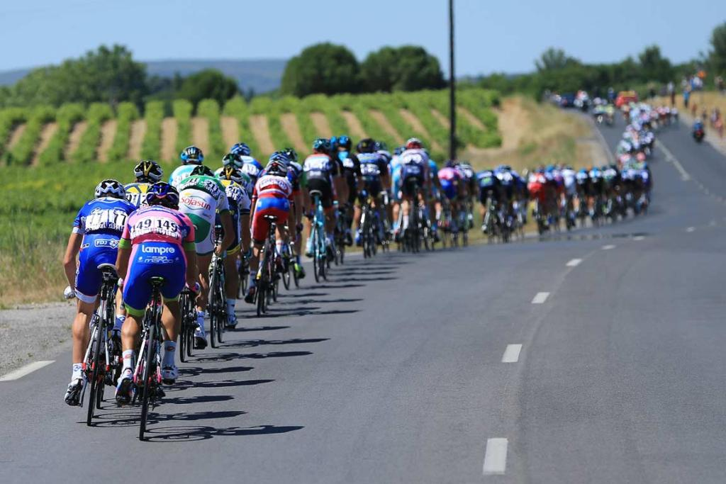 The peloton heads through the French countryside.