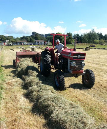 ON THE JOB: Neville Cleland baling hay at Huiroa, east of Stratford, earlier this year.