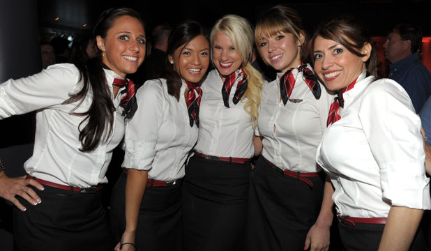 Flight Attendant Landscape