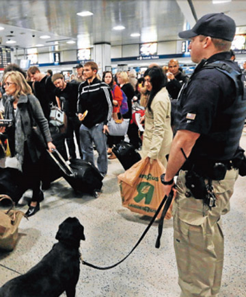 AN EYE ON US ALL: An Amtrak police officer with his bomb detector dog watches as passengers prepare to board a train at a New York Station.