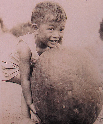 HEAVY LOAD: A worker's child struggles to lift a 14kg watermelon at the Gocks' farm in the 1950s.