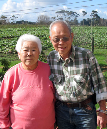GREEN FINGERS: Fay and Joe Gock have received the country's top horticulture award.