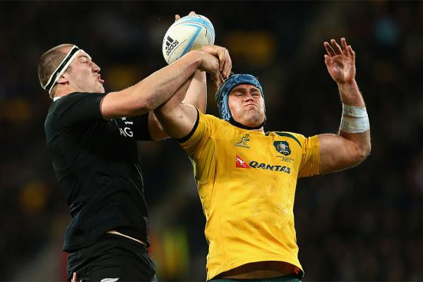 All Blacks vs Wallabies: Bledisloe II