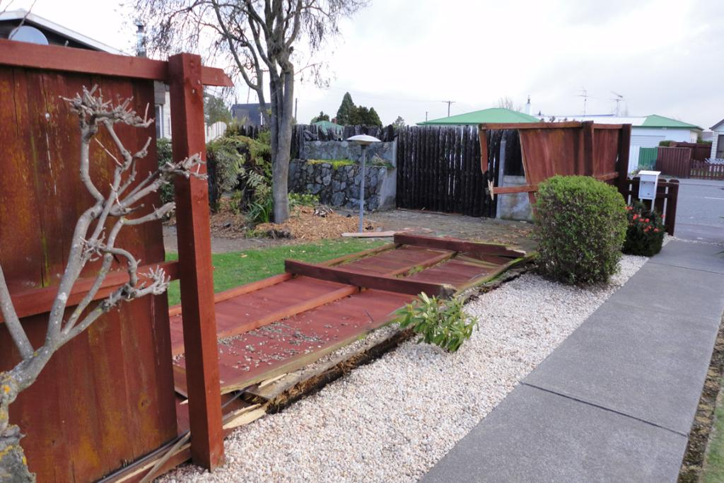 Fence casualty in Ashburton