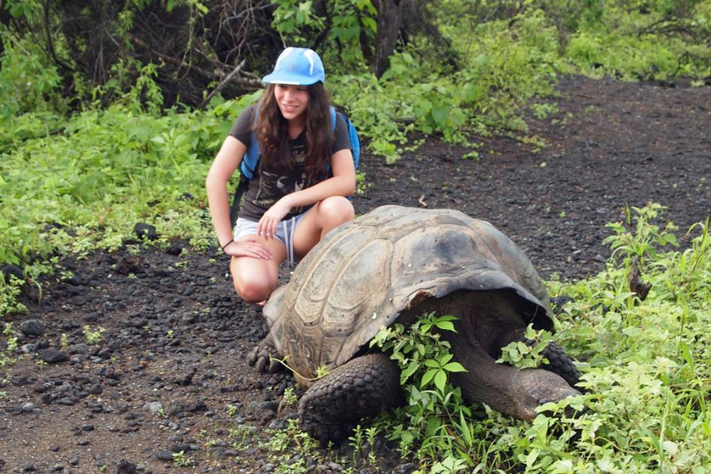 GALAPAGOS ISLANDS: There are giant sea turtles, sea lions, hammerhead sharks, bottle nose dolphins, iguanas, and more.