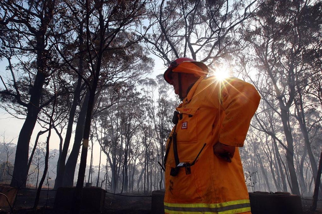A firefighter surveys the scorched countryside after a fire tore through Yanderra.