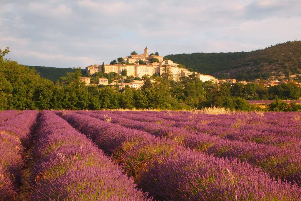 Provence 1