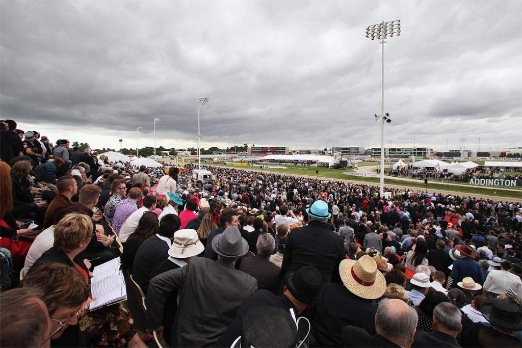 New Zealand Cup Day