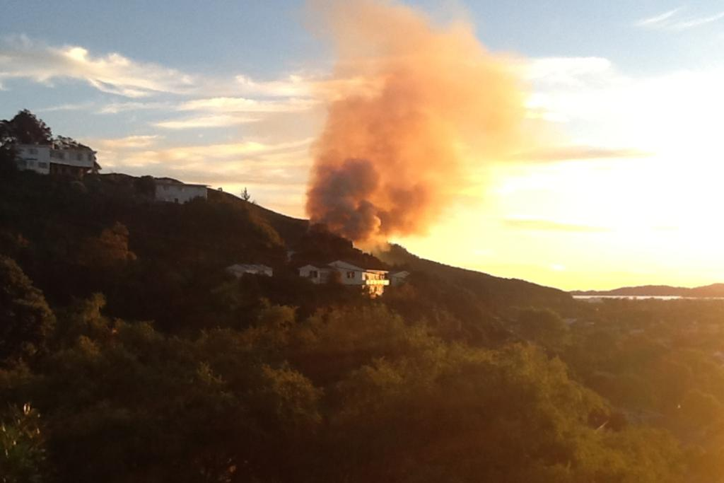 The large scrub fire in Hutt Valley.