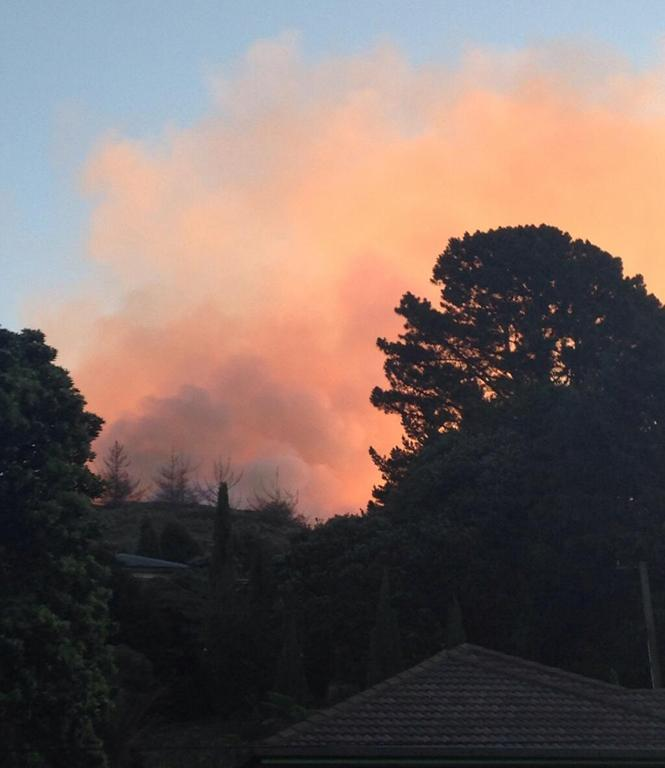 This photo was taken from Wyndum Ave, Lower Hutt of the large scrub fire.