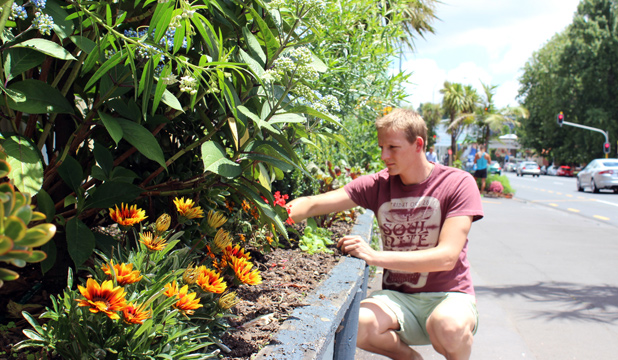GREEN FINGERS: Andrew Mackenzie volunteers to look after the gardens outside the Wilson carpark opposite Victoria Park Market.
