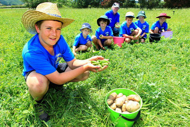Poppy's potatoes: Grandchildren, from left, Max Morris, Sam Morris, Jake Gane, Jimmy Morris, AJ Gane and Mya Gane with Graeme 'Poppy' Gane at the pea patch of his Rapaura farm