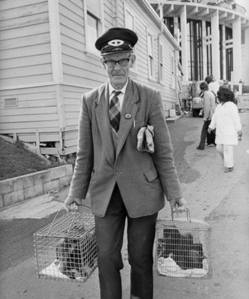 DAYS BEFORE: Alf Benning with two cages of captured cats not long before he murdered his wife.