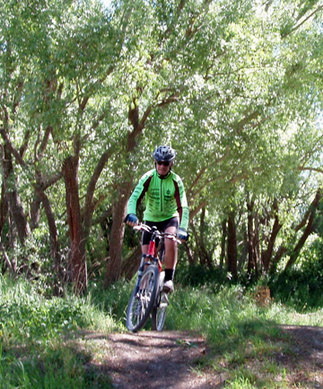 BACK ON TRACK: After nearly two months of a clean up, Geraldine's mountainbike track is open to the public.